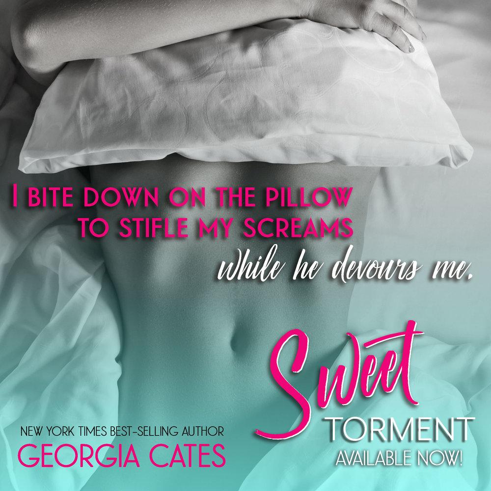 Sweet Torment Teaser 11.jpg