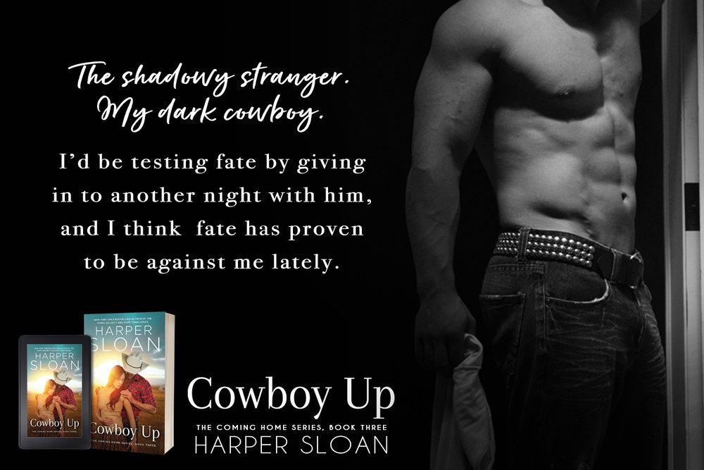 7 my dark cowboy.jpg