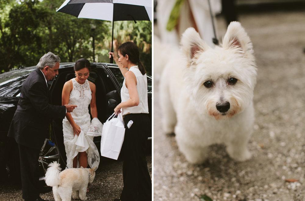 Janet + Gary Vizcaya Museum Garden Wedding Miami33.jpg
