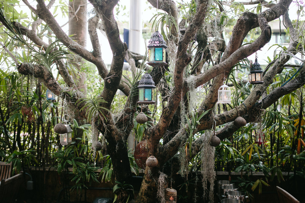 Casa Tua Wedding in South Beach Miami (55).jpg