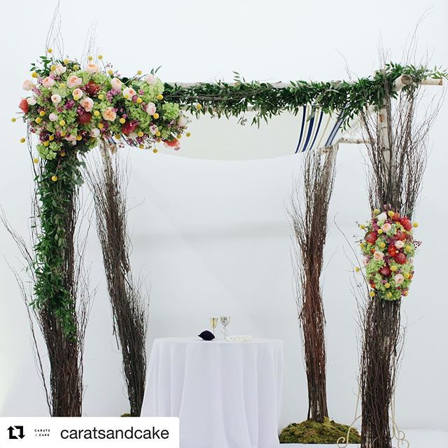 @demitrani + @hanslango wynwood ceremony setup was one of my favorites with an amazing team of wedding pros.....thanks for sharing @caratsandcake . #Repost @caratsandcake with @get_repost . . . Donna & Hans' ceremony setup @rubellcollection -- Photography @toddgoodphoto -- Planning @anjesoirees -- Flowers @avantgardensmia -- Catering @billhansenluxurycatering -- Cake @ana_paz_cakes -- Hair & Makeup @freshbeautystudio -- Music @bittonevents . . . . . #wynwoodwedding #rubellcollection #weddingceremony #miamiwedding