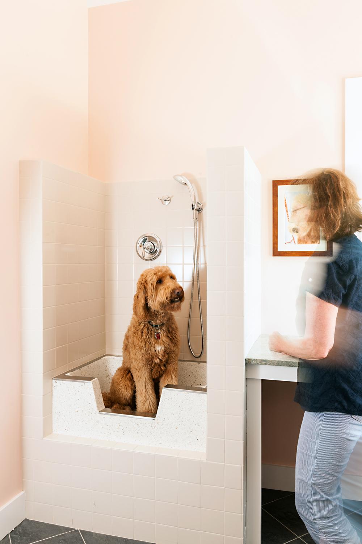 brewster_dog bath.jpg