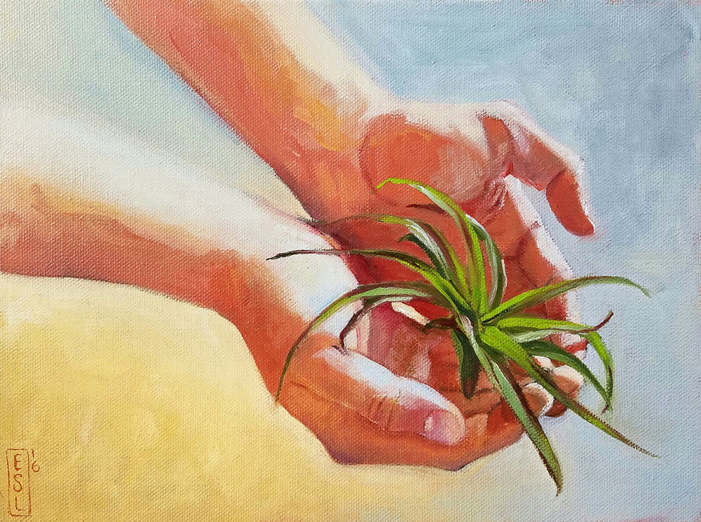 Airplant: Finn's Hands