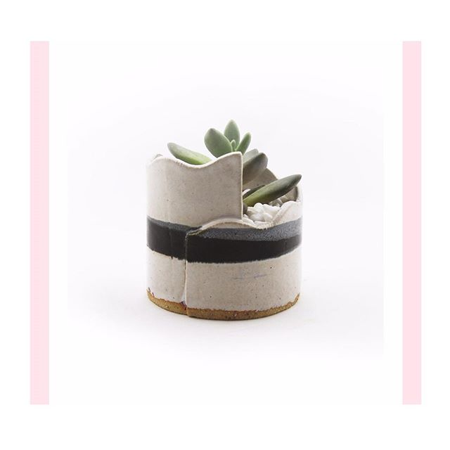〰 stripe wave planter 〰 avail now on the webshop✨