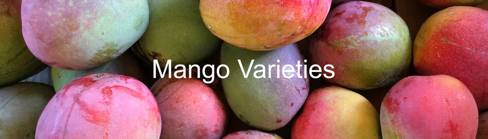Click here to see our more than 50 varieties of mango!