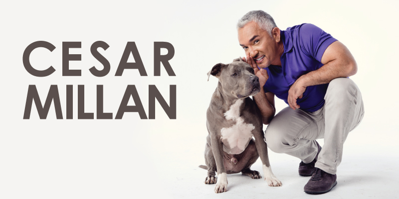 Cesar Millan Redding Civic Auditorium