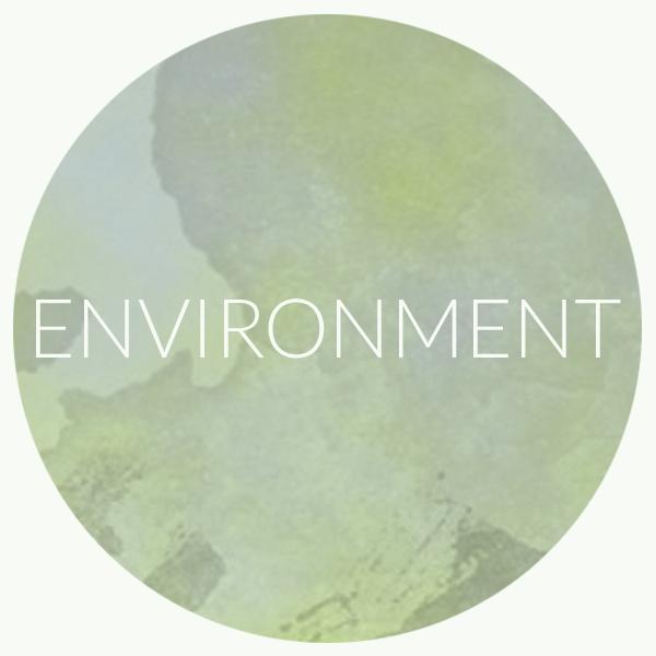 ENVIRONMENT CIRCLE.png