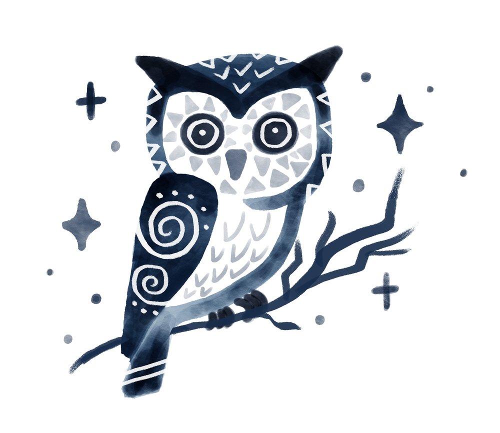 OWLS_Finals.jpg