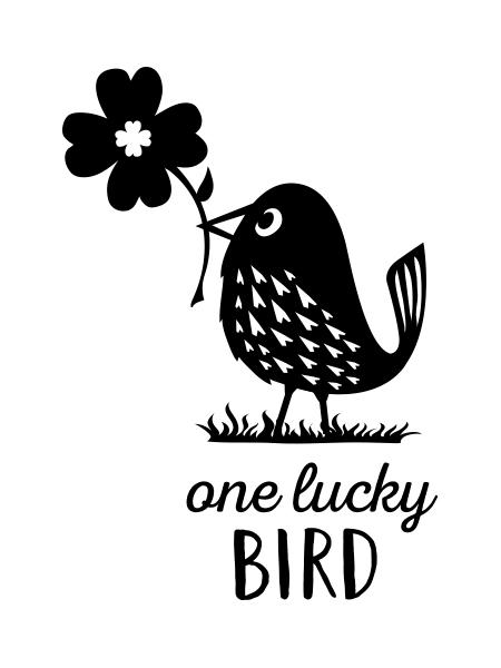 LuckyBird.jpg