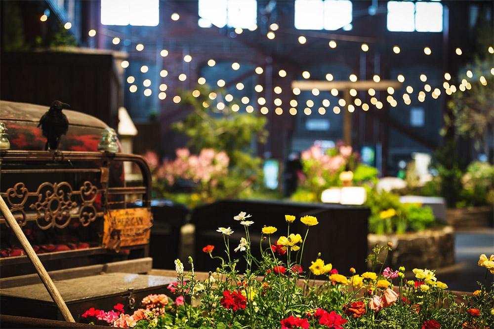 flowershow2.jpg