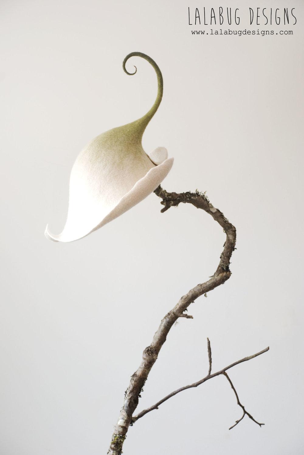 flower-calalily.jpg
