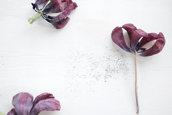 jour-florals-2-oct16.jpg