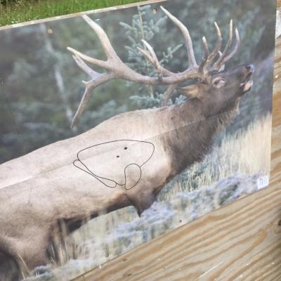 Elk_target.JPG