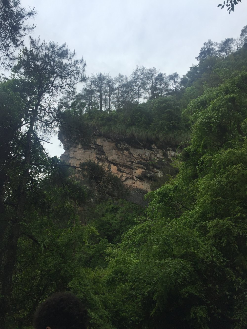 Wuyi Mountain.  Photo taken from our Sept 2015 visit.