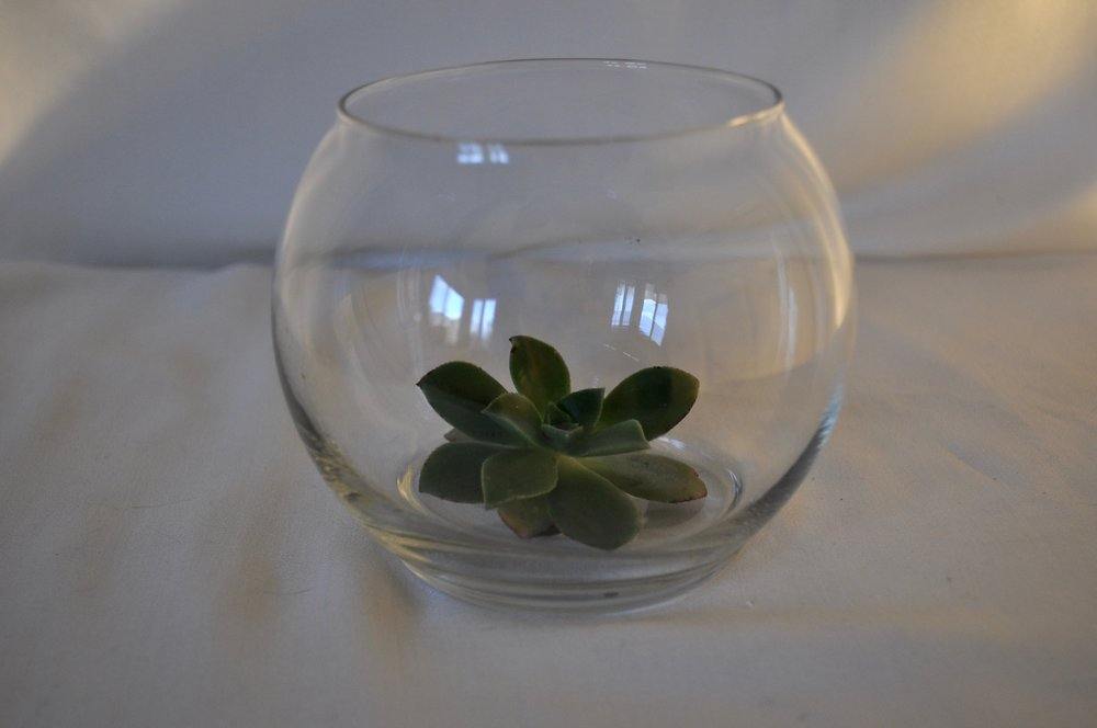 Round Glass Votive - Qty: 9