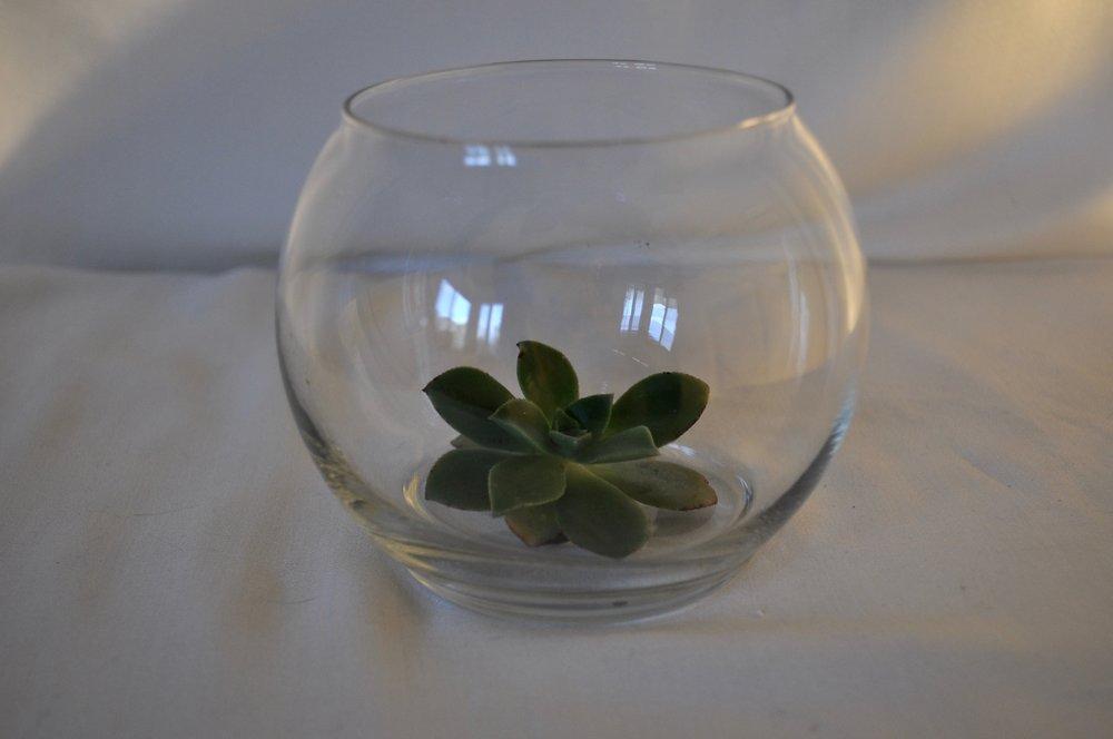 Round Glass Votive - Qty: 9