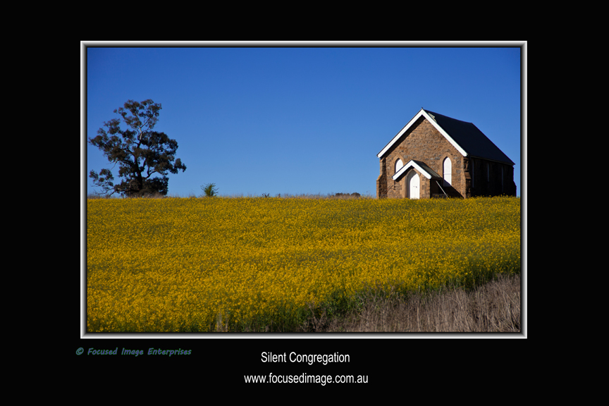 Silent Congregation.jpg