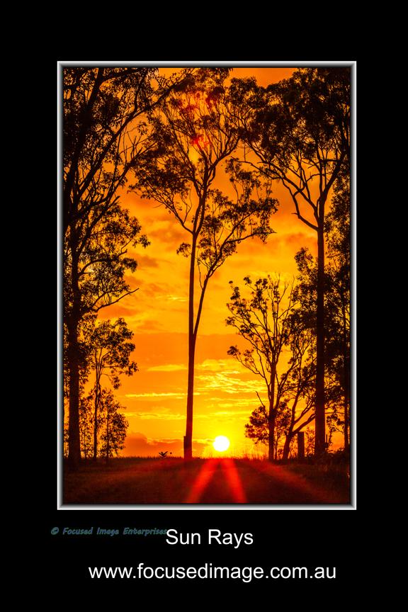 Sun Rays.jpg