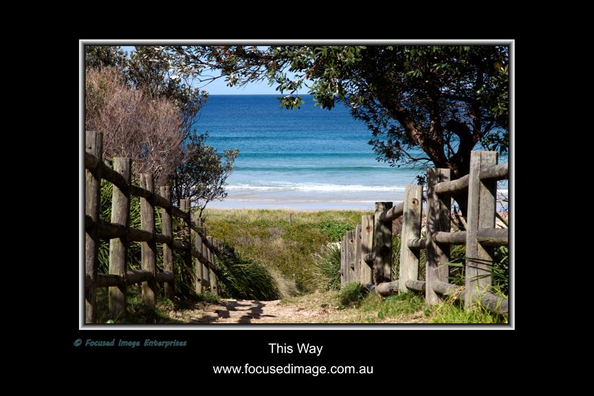 This Way.jpg