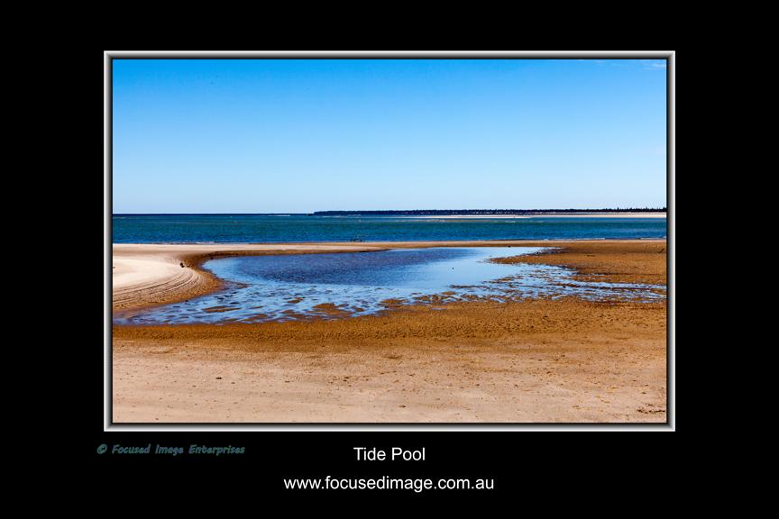 Tide Pool.jpg