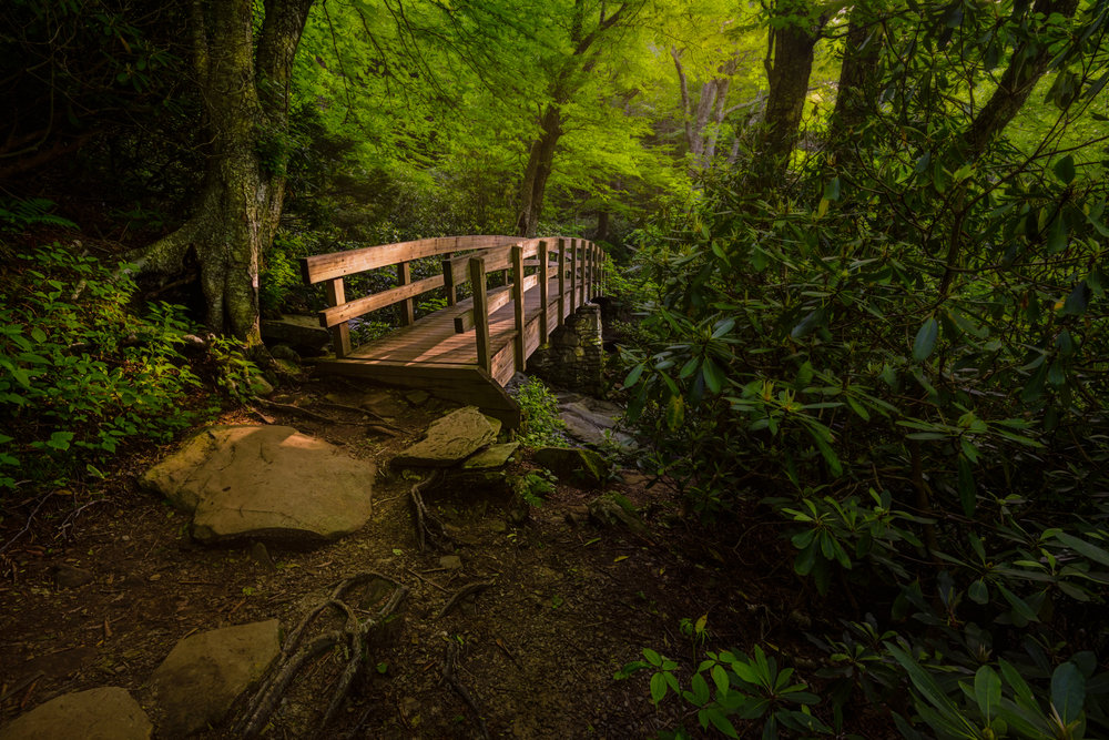 Tanawha Trail View - Blue Ridge Parkway
