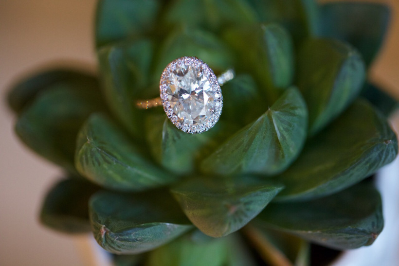 succulent ring.jpeg