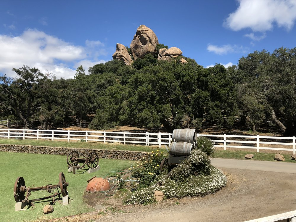 Some of the grounds at Malibu Wine Safari--a great activity for the bachelorette party I was on!