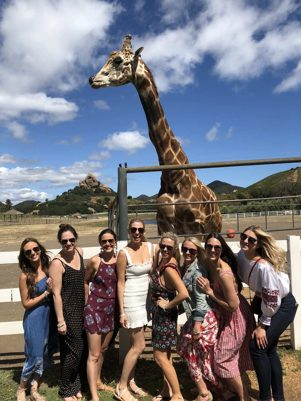 Stanley the giraffe loved the bachelorette party girls