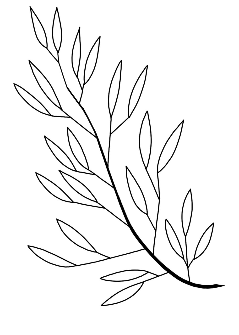 branch.jpg