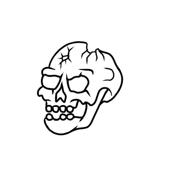 skullCracked.jpg