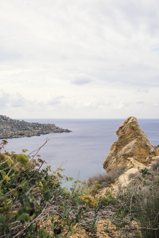 malta7.jpg