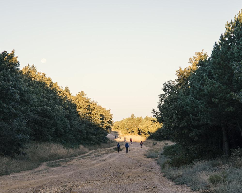 hiking_camino copy.jpg