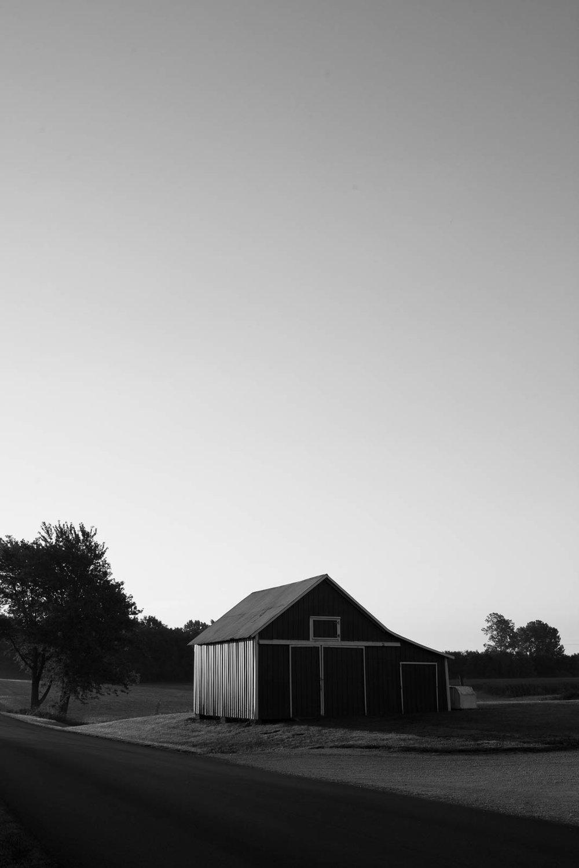 matthew-carroll-491.jpg