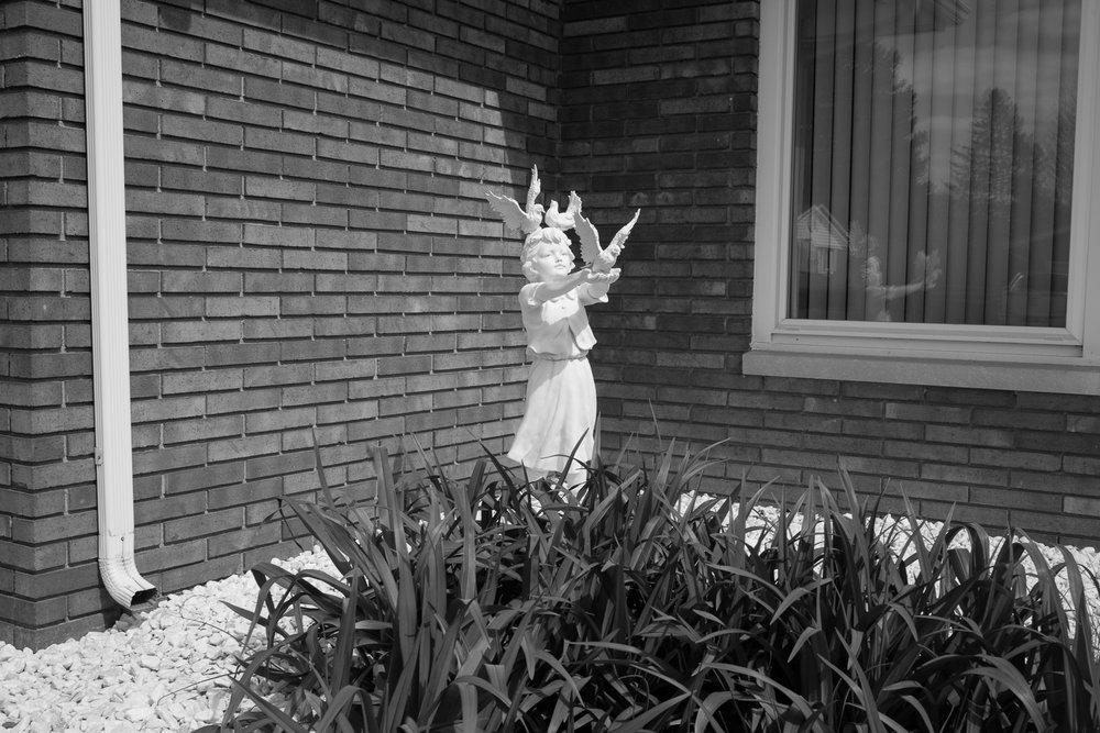 Matthew Carroll-9.jpg