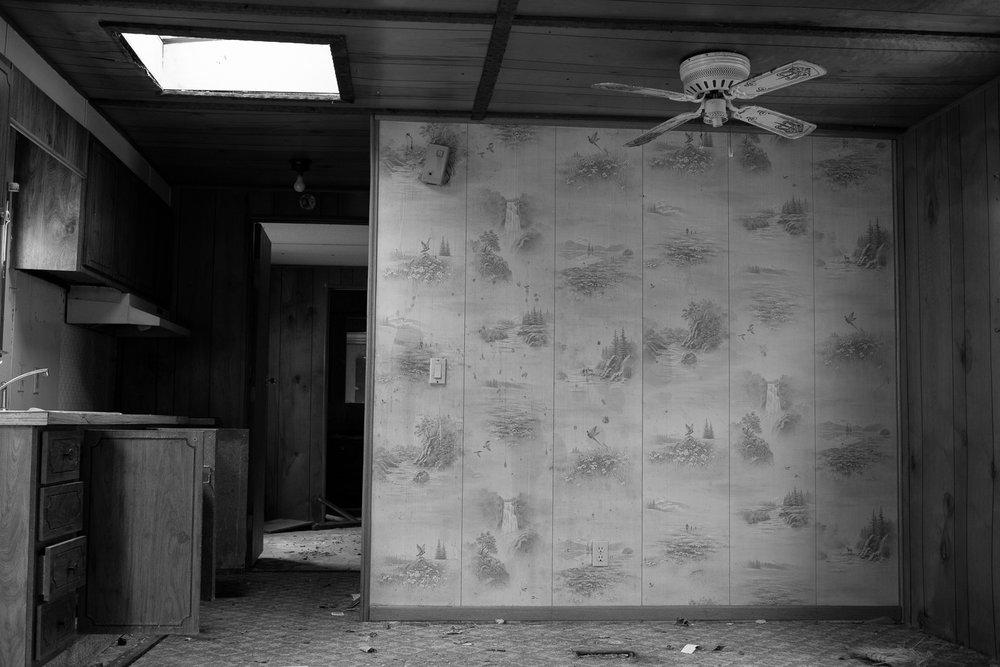 Matthew Carroll-22.jpg