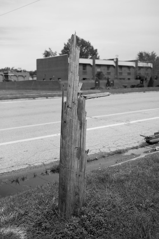 Matthew Carroll-39.jpg