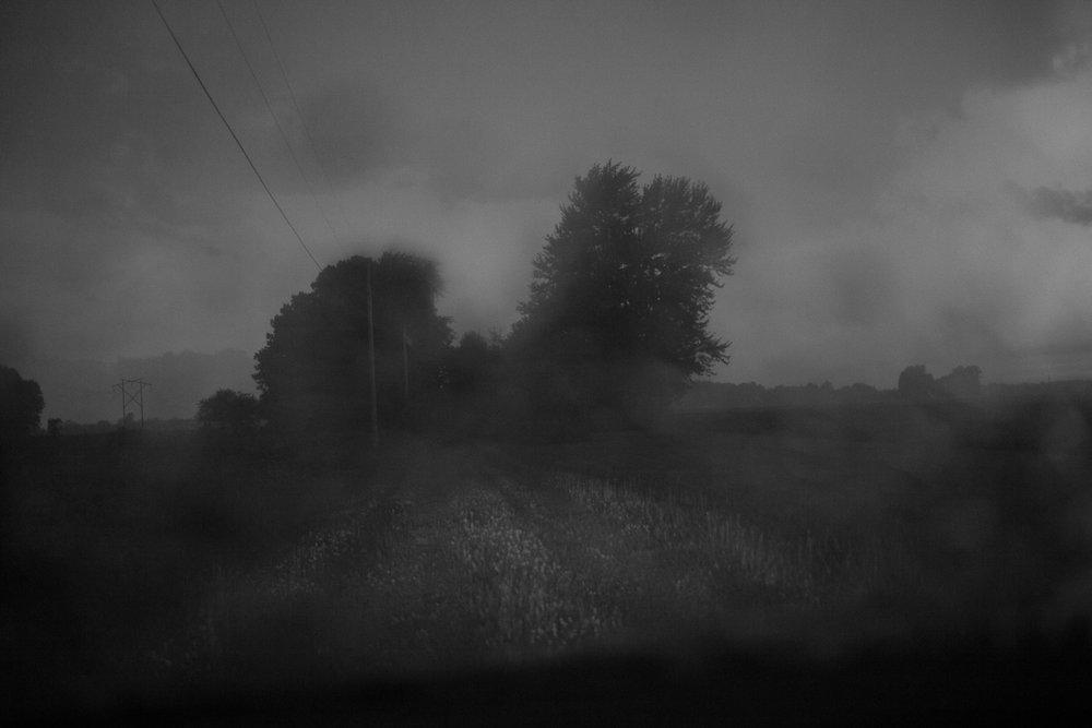 Matthew Carroll-4.jpg
