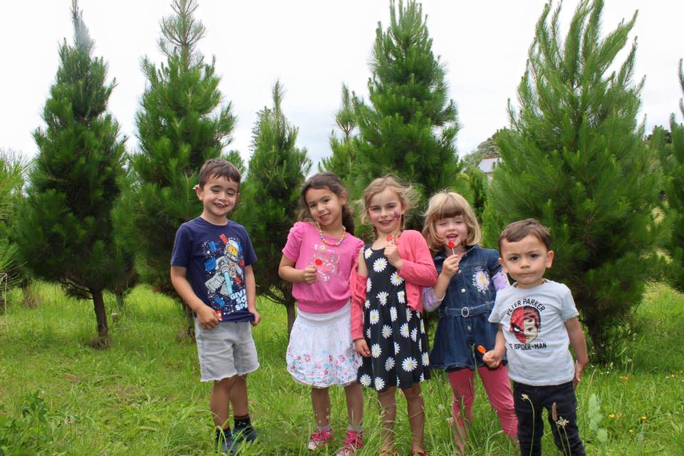 children in trees.jpg