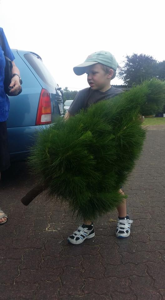stan carrying tree.jpg
