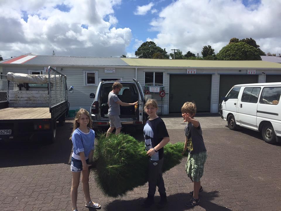 kids carrying tree on carpark.jpg