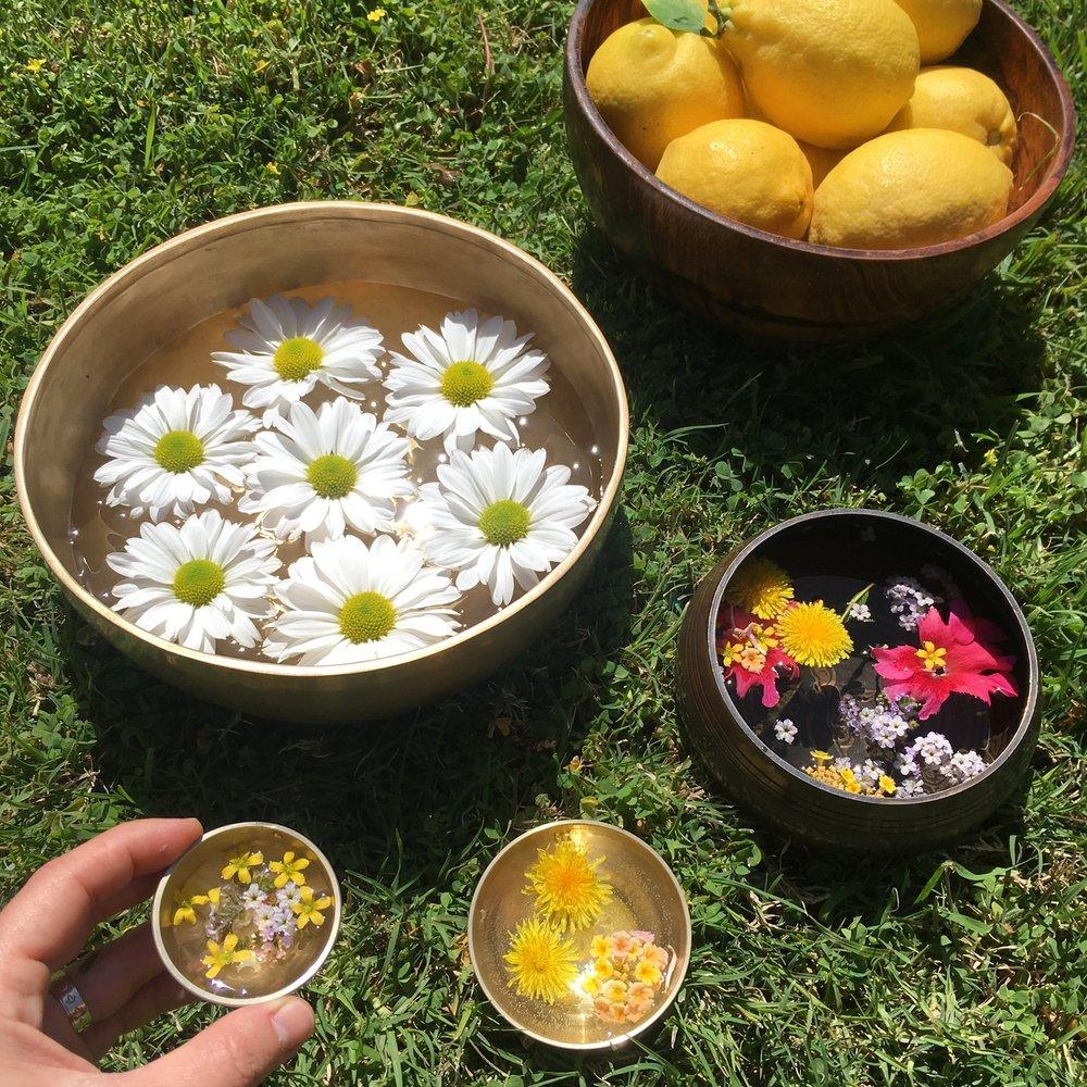 flowers and lemons.jpg