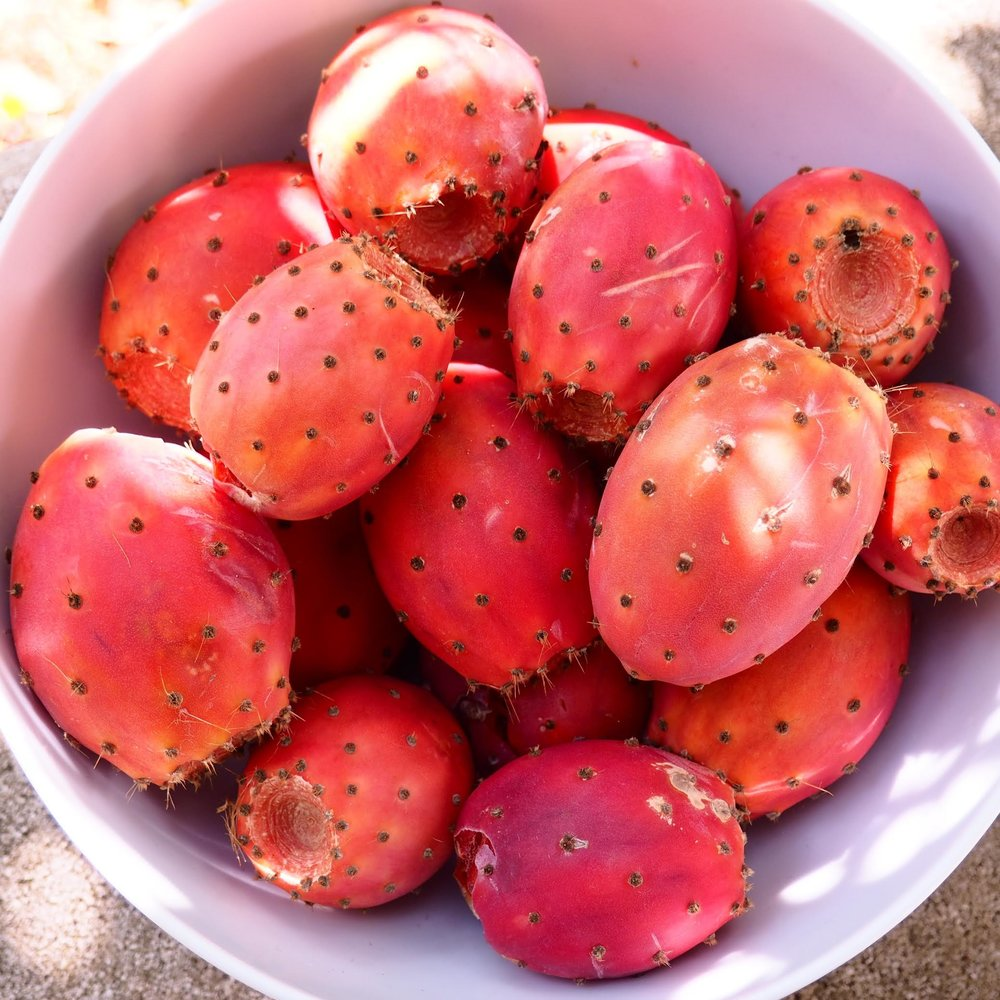 food prickly pear.jpg