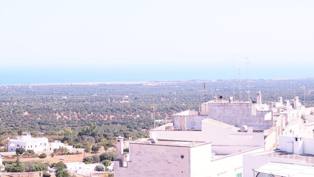 terrace view 5.jpg