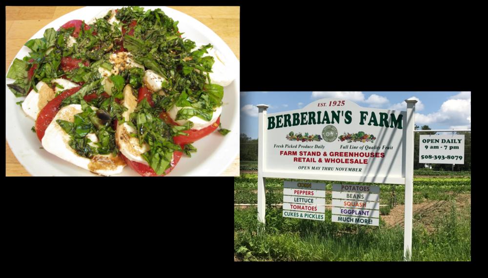 Berberian Farms Collage_Breitz.png