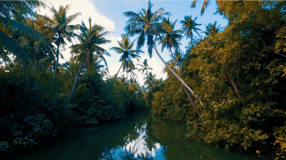 The Valley of the Latte  - This sustainable island park offers a variety of safe and exciting tropical adventures while you giving you a sense of how their ancestors' livelihood was like. It's great for the adventurers.