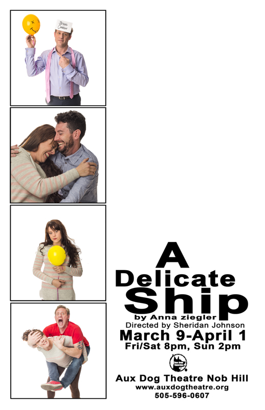 20180212-A delicate ship poster 11 x 17.JPG