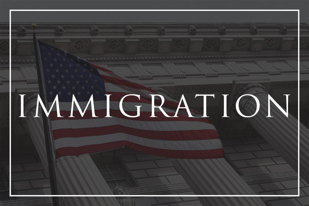 Cronus Law - Immigration Button.jpg
