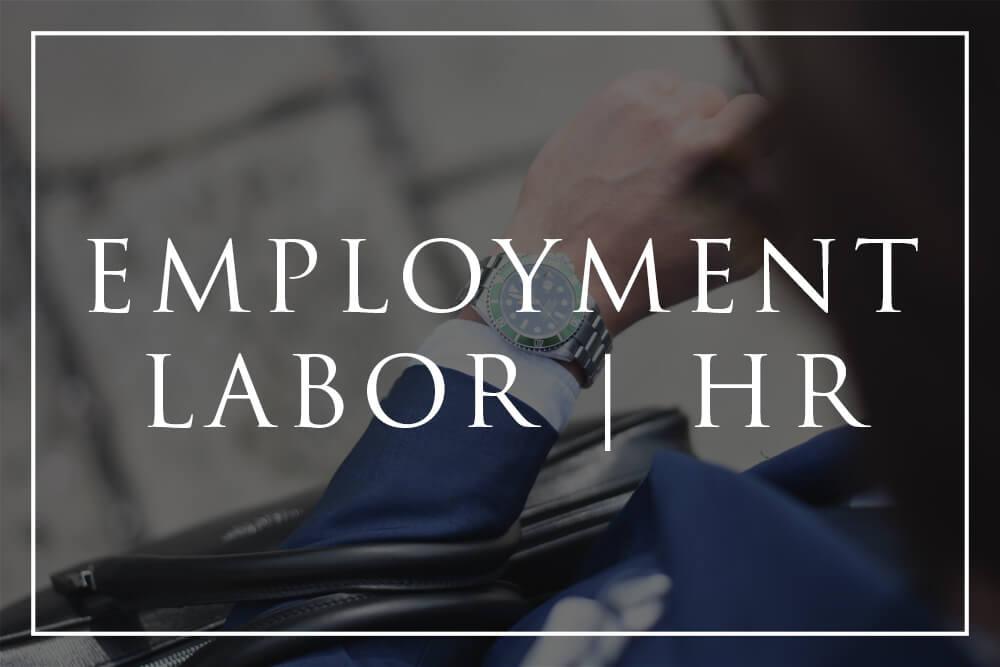 Cronus Law - Employment Labor HR Button.jpg
