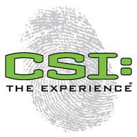 csi the experience.jpg