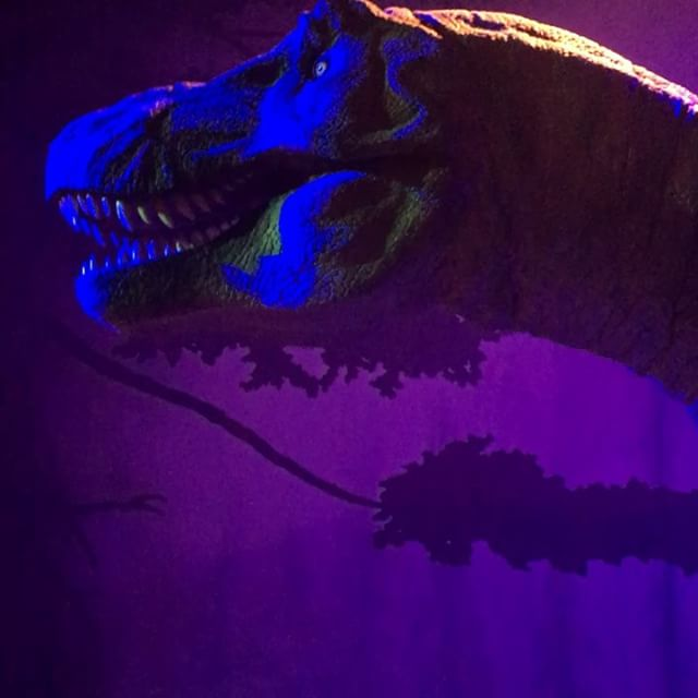 Humming the Jurassic Park theme in the Dinosaur room! . . #trex #dinosaur #londonmuseums #outandabout #familyfunday